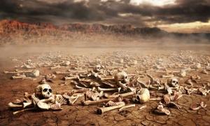 Valley of Dry Bones Skeleton Ezekiel