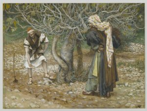 Parable of the Barren Fig Tree 1